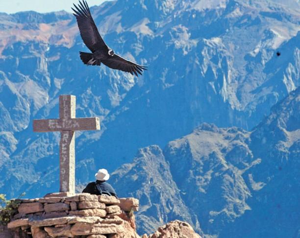 Cruz del Condor (forrás: http://www.la-razon.com)