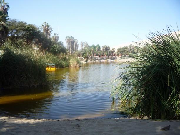 Tiszta Városligeti tó