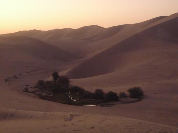 Esteledik a sivatagban